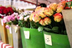 kwiciarnia pelna kwiatow